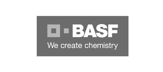 UP TO YOU STUDIO CLIENT BASF